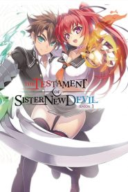 The Testament of Sister New Devil 2015